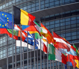 Estonian & International Tax Consultation